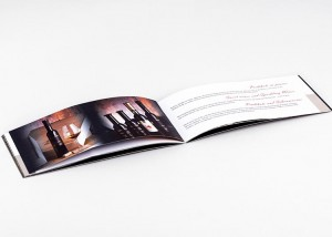 Tiskarna Petrič | Brošura Steyer / tisk / tiskanje